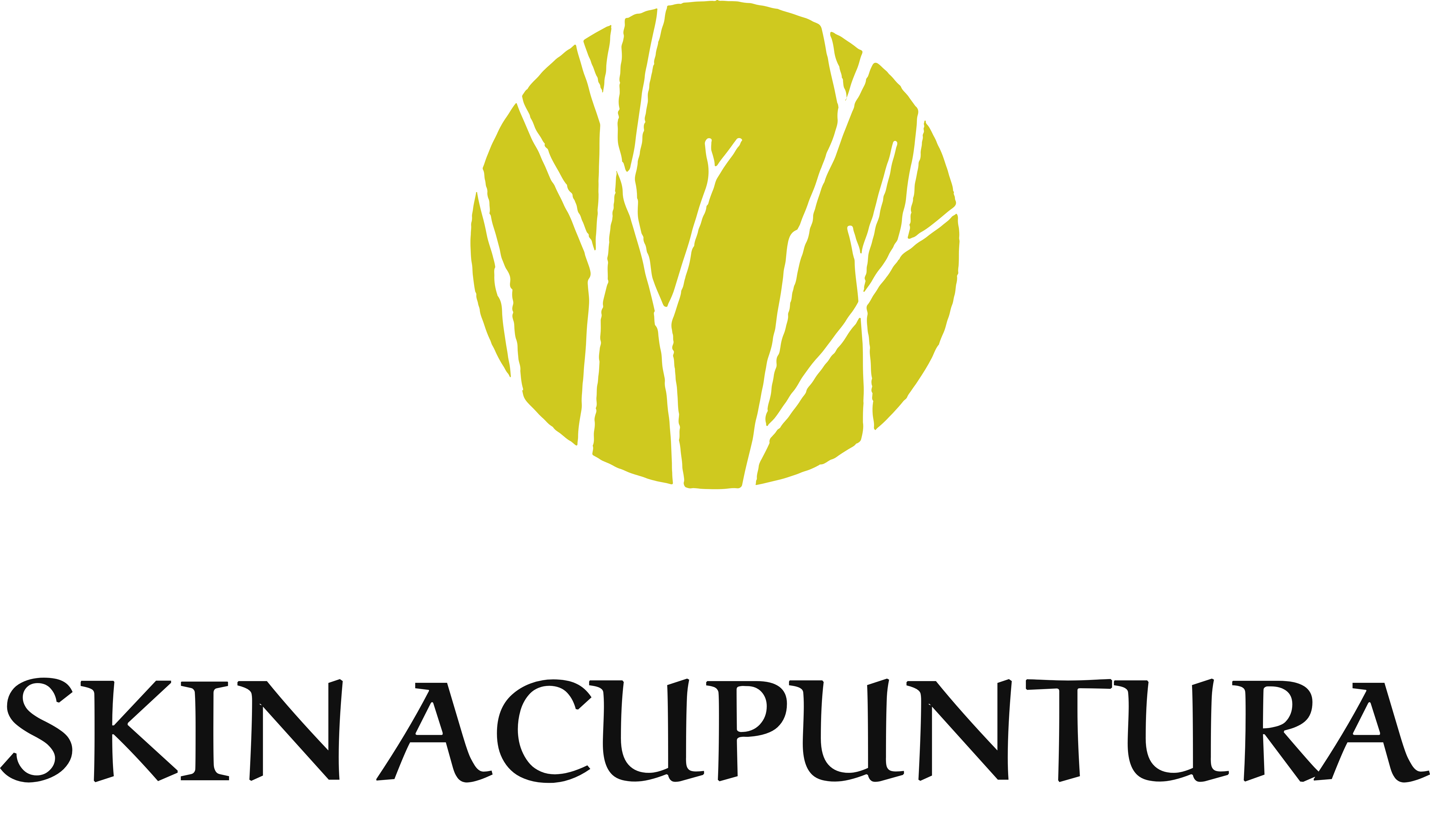 SKIN ACUPUNTURA